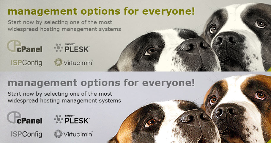 Management options for everyone
